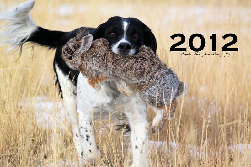 Navy is the 2012 Calendar Girl