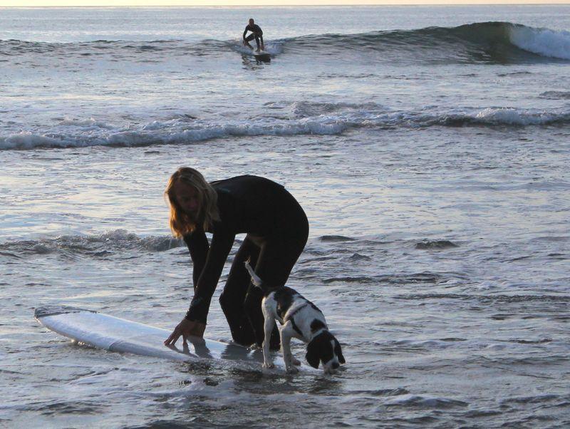 SurferPup